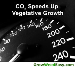 Co2 grow system