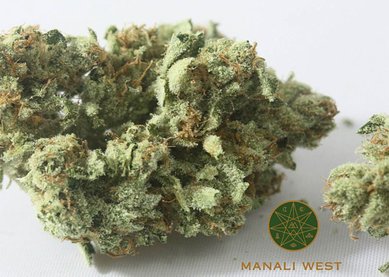 The most powerful form of cannabis is