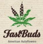 Fast buds blackberry